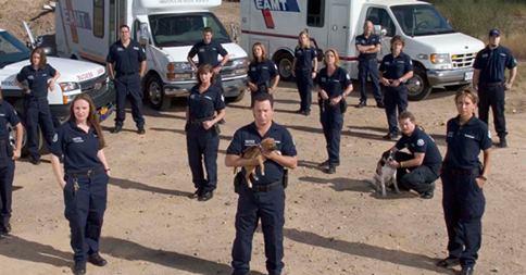 В Нидерландах создан полицейский отряд по защите животных от жестокого обращения