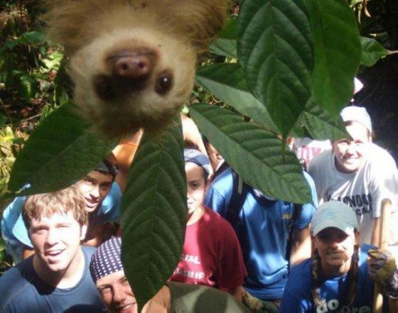 Улыбочку: животные в кадре (фото)