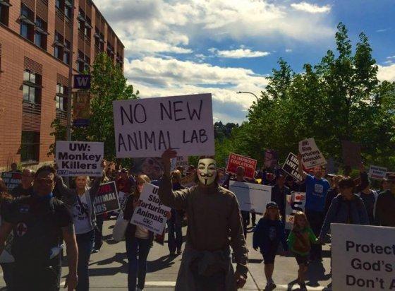 Протест против  вивисекции в Сиэтле США