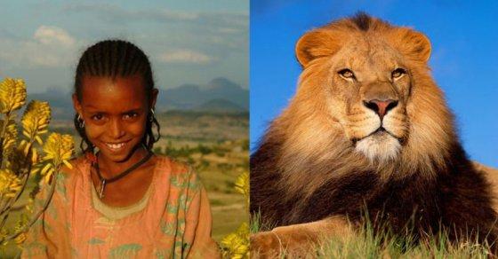 Животные спасают людей: 8 невероятных историй