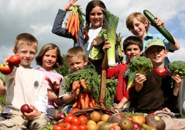 здоровье детей и общество