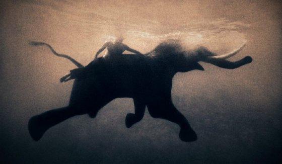 Невероятные фотографии в проекте Грегори Кольбера «Пепел и снег»: в гармонии с миром