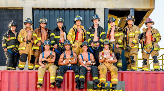 Пожарные из Чарльстона   пришли на помощь бездомным животным