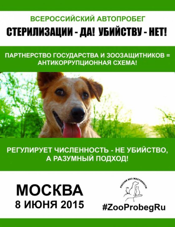 Всероссийский автопробег в защиту бездомных животных «Стерилизации – ДА! Убийству – НЕТ!»