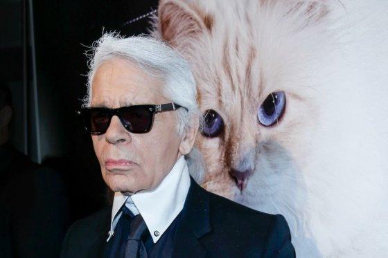 Брижит Бардо написала письмо кошке Карла Лагерфельда