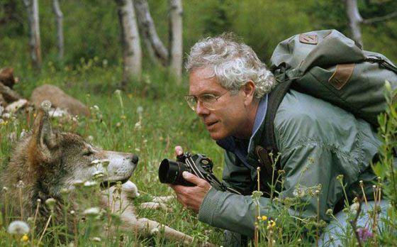 Семейная пара прожила  шесть лет в лесу с волками