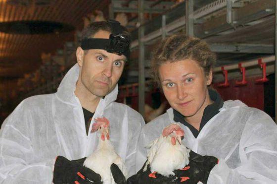 Активисты из Швеции  сообщества «Пустые клетки» спасли 8 кур