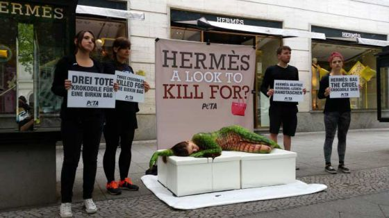 В разных городах мира прошли  акции  против жестокой моды от Hermès