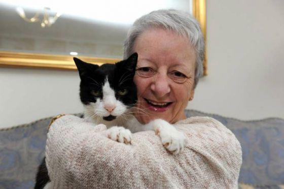 Кот предупредил хозяйку об опухоли