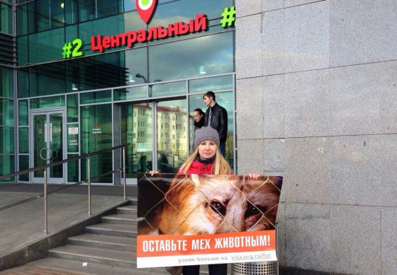 В России и странах ближнего зарубежья проходит  кампания  «Животные - не одежда! 2015»