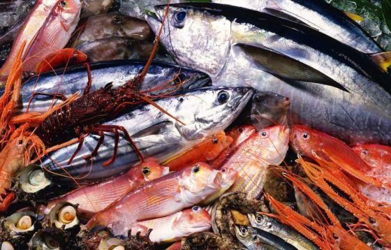 «Морепродукты»: большая ложь о большой пользе