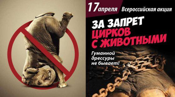 17 апреля — II Международная и Всероссийская акция «За цирк без животных» 2016