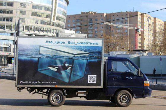 В Москве появилась реклама на транспорте за цирк без животных