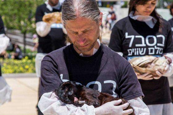 «В страданиях все равны»:  в Тель-Авиве прошла акция против убийств животных