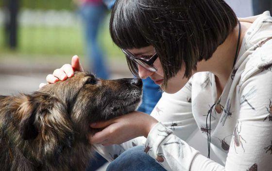 29 мая в Москве пройдет выставка приютских животных «Надо брать! Весной!»