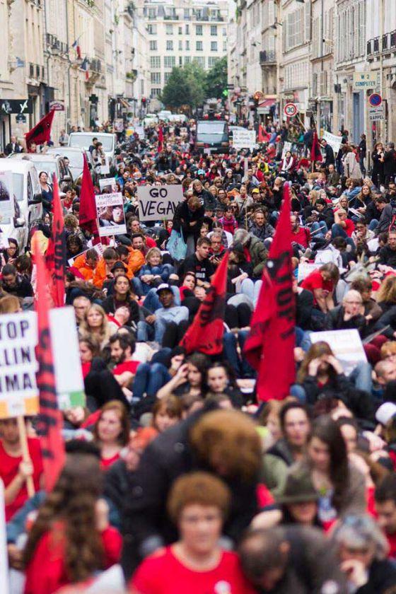В Париже прошла массовая акция за освобождение животных