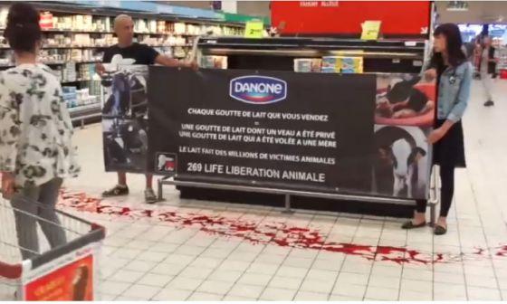 Французские активисты 269Life провели акцию в супермаркете против молочной индустрии