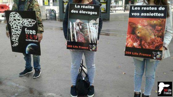 Бойня людей на улицах Нанси: свежая человечина  от 269 Life France
