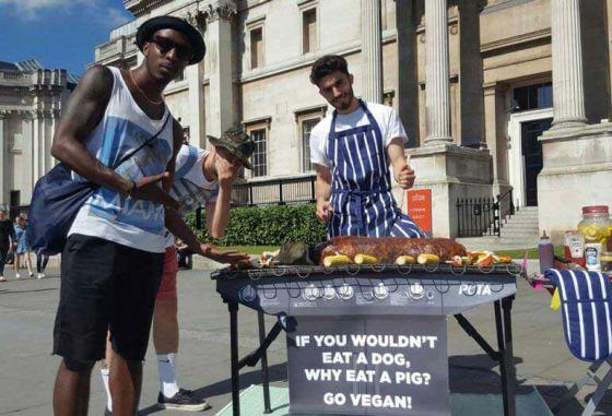 В центре Лондона прохожим предложили попробовать мясо собаки