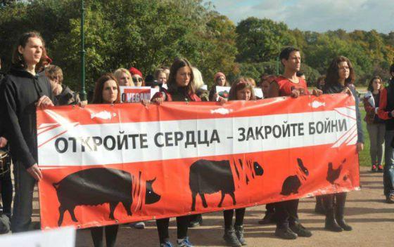 В Петербурге прошла акция за закрытие скотобоен
