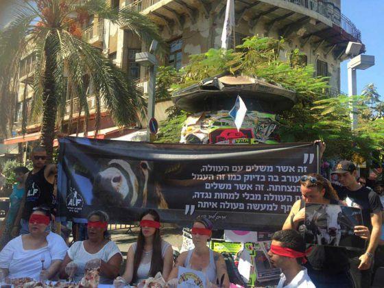 В Тель-Авиве и Хайфе  ALF  Израиля  провел  акции  в  честь  еврейского  Нового  года