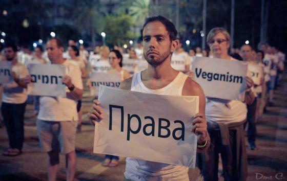 В центре Тель-Авива прошла акция солидарности с порабощёнными животными