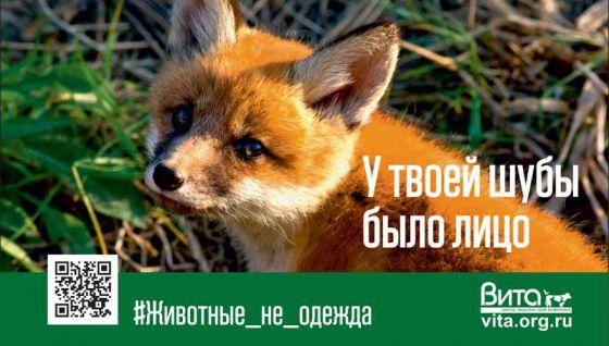 В Москве появилась  реклама на транспорте против меха животных