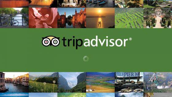 Крупнейший  туристический  сайт  TripAdvisor  запускает  новую  программу  по  защите  животных