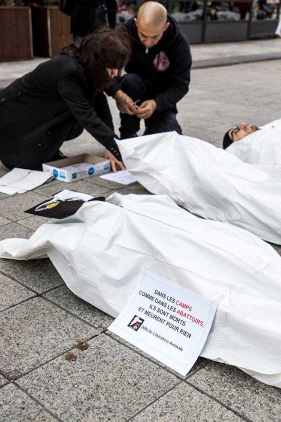 Активисты  269Life провели в Лионе провокационную акцию  в  национальный День памяти жертв войны