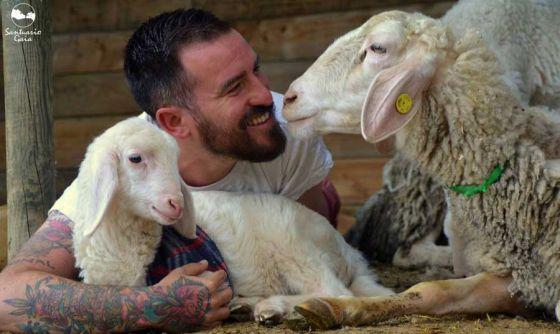 Чудесное видео о спасении 660 животных за 4 года работы приюта Santuario Gaia