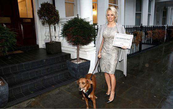 Памела  Андерсон удостоилась звания Человека года - 2016 от ПЕТА
