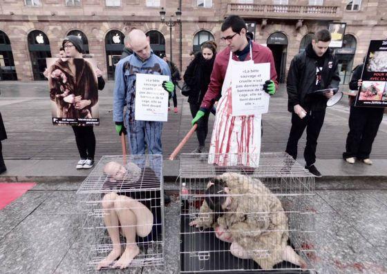 В Страсбурге прошла акция против звероферм
