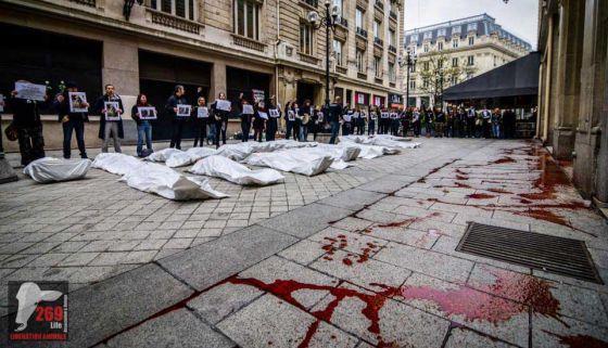 В Париже прошла акция памяти жертв молочной промышленности