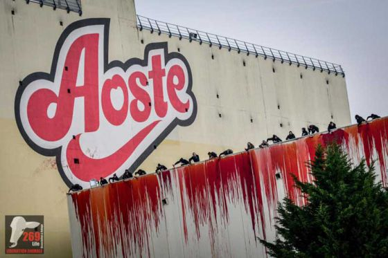 Активисты 269Life Франции показали истинное лицо кровавой индустрии