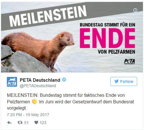 Новый закон положит конец меховой индустрии в Германии