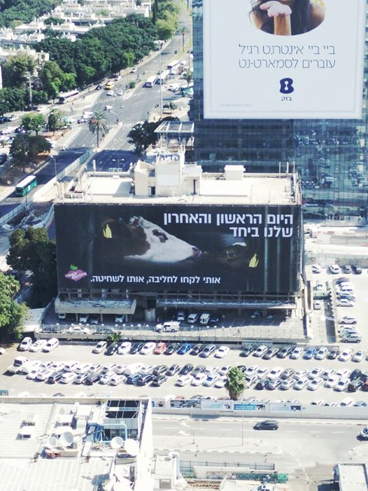 В Израиле появился огромный баннер против молочного рабства