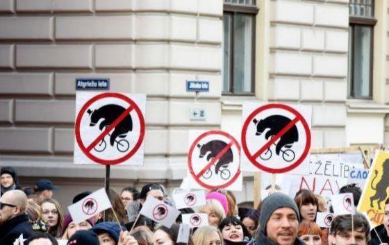 Латвия окончательно запретила цирк с животными