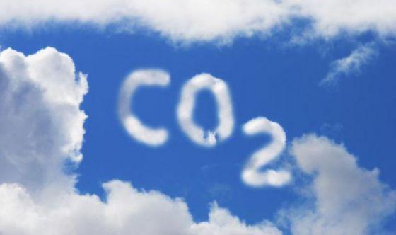 Потребители мяса производят  вдвое больше СО2, чем веганы