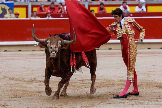 Испанские активисты раскрывают кровавую правду о событиях в Сан-Фермин: ФОТО