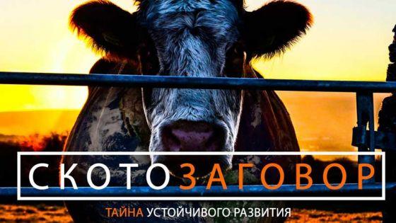 «Скотозаговор»: фильм о разрушительном влиянии животноводства на экологию планеты