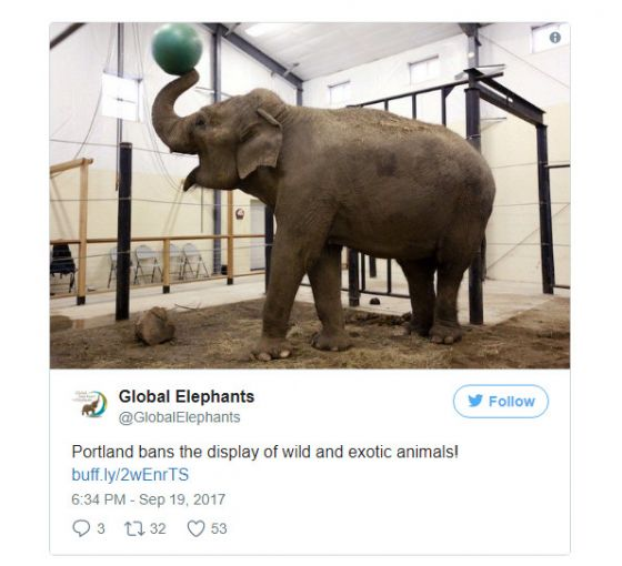 В Портленде запретили  цирки с дикими животными