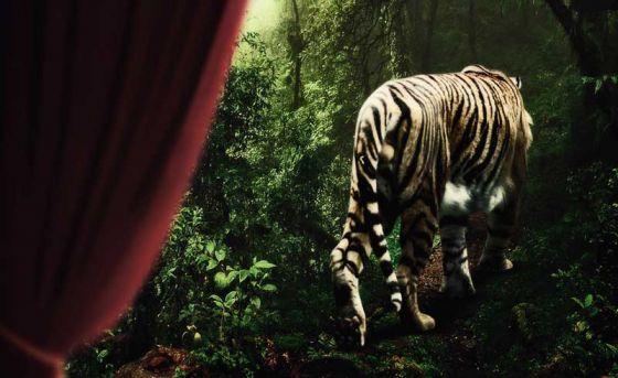В Эстонии запретили цирки с дикими животными