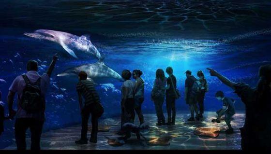 Принц веган Халед откроет на Ближнем Востоке этичные водные парки нового поколения