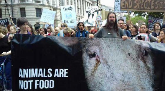 Тысячи людей вышли на марш за права животных во всем мире: репортаж из Лондона