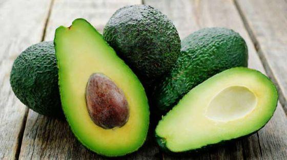 Ученые заплатят по 300 долларов любителям авокадо