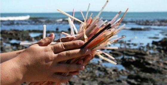 Великобритания  планирует запретить использование  одноразовых пластиковых изделий