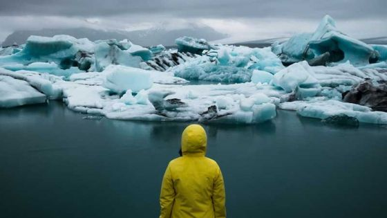 Переход на веганство может снизить  выбросы углекислого газа  на 70%