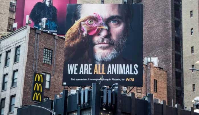 Картинки по запросу хоакин оскар за защиту животных