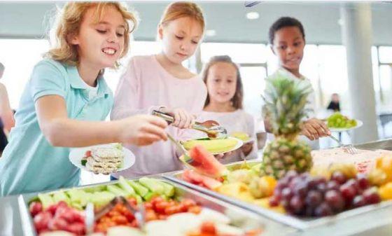 Ученые призывают мэров  к  уменьшению мясо-молочных продуктов  в школах