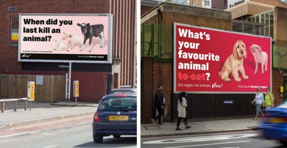 «Когда вы в последний раз убивали животное?» – спрашивают билборды на улицах Великобритании